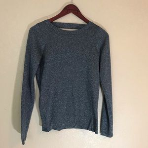 NWT low v back sparkly gray sweater crew neck nice